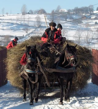Hay delivery